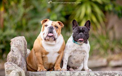 Betty & Daisy