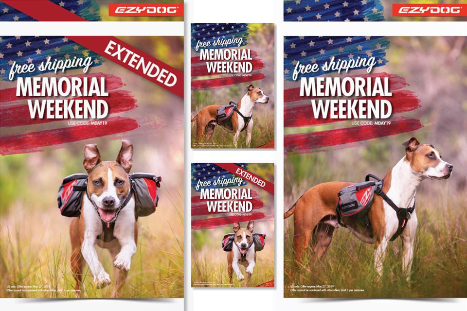 commercial-pet-photographer-11-1