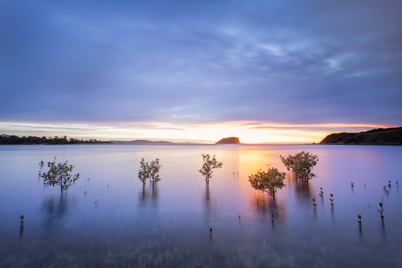 minnamurra-sunrise