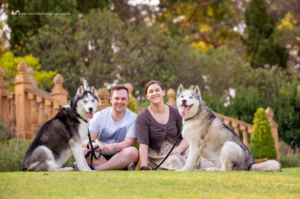 Beau & Rowdy – Photography Session at Fagan Park
